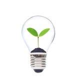 Risparmio verde Immagini Stock