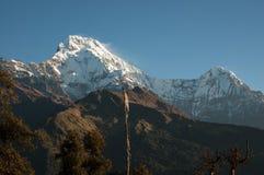 Rispettando picco massiccio di Annapurna del sud, Ghandruk, Nepal Fotografia Stock Libera da Diritti