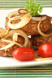 Rissole with grilled onion and tomato Royalty Free Stock Images