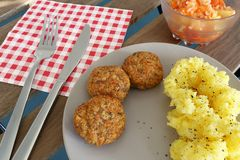 Rissoles on the plate Royalty Free Stock Image