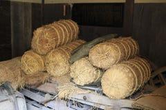 Rissugrör i traditionellt japanskt hus i Kawasaki royaltyfri fotografi