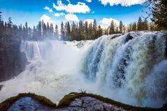 Ristafallet-Wasserfall im Westteil von Jamtland ist aufgeführt Stockfotografie
