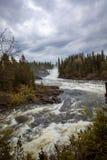 Ristafallet-Wasserfall im Westteil von Jamtland ist aufgeführt Lizenzfreies Stockfoto