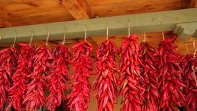 Ristas rouges de piment accrochant sur un faisceau vert Photo libre de droits