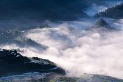 Risterrasser och dimma arkivfoton
