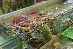Ristorante dei frutti di mare Immagine Stock