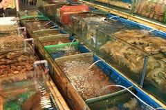 Ristorante dei frutti di mare Immagini Stock