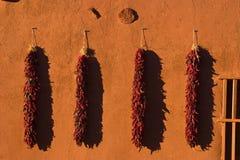 Ristras del peperoncino rosso che appendono sulla vecchia parete del Adobe al tramonto Fotografia Stock