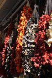 Ristras of dried eggplant and peppers  hanging in the bazaar  in Stock Image
