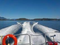 Risveglio ad alta velocità della barca Immagine Stock