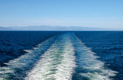Risveglio della barca Immagini Stock