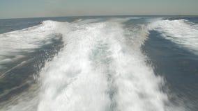 Risveglio della barca stock footage