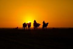 Rit in de woestijn Stock Afbeeldingen