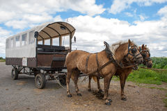 Rit door de Vlaamse gebieden met paard en behandelde wagen. Stock Foto's