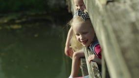 Ritratti dei bambini che mettono sul ponte e che esaminano il fiume nel movimento lento HD pieno del parco di estate stock footage
