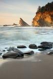 Ritratti del litorale dell'Oregon Fotografie Stock