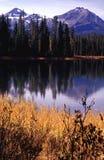 Ritratti dell'Oregon Fotografia Stock