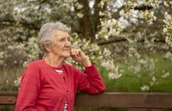 Ritratto all'aperto della donna senior in primavera fotografia stock