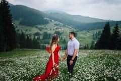 Ritratto all'aperto delle coppie sorridenti attraenti che si tengono per mano sul prato della margherita ai precedenti del bello Fotografie Stock