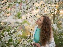 Ritratto all'aperto di bella donna in rivestimento bianco fra l'albero bianco del fiore Fotografia Stock