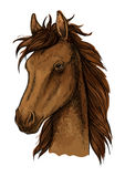 Ritratto artistico del cavallo fiero di Brown Immagine Stock Libera da Diritti