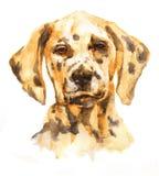 Ritratto artistico di un cane illustrazione vettoriale