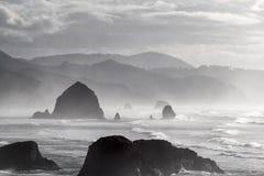 Ritratto in bianco e nero della spiaggia del cannone Immagine Stock Libera da Diritti