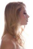 Ritratto chiaro posteriore Fotografia Stock