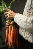 Ritratto con le carote immagini stock