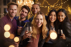 Ritratto degli amici con le bevande che godono della festa fotografia stock libera da diritti