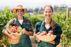 Ritratto dei canestri felici della tenuta delle coppie dell'agricoltore delle verdure e della frutta Fotografia Stock Libera da Diritti