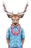Ritratto dei cervi in camicia di estate con hawaiano Lei royalty illustrazione gratis