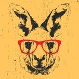Stock Con Illustrazione Del Di Ritratto Da Gli Occhiali Canguro Sole kiuPXZOwT