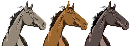 Ritratto del cavallo Fotografie Stock