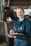 Ritratto del cavallo d'esame del veterinario femminile in stalla fotografia stock