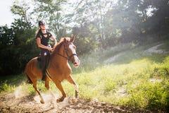 Ritratto del cavallo da equitazione della giovane donna in campagna fotografia stock libera da diritti