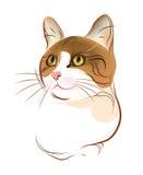 ritratto del gatto di tabby dello zenzero Fotografia Stock Libera da Diritti