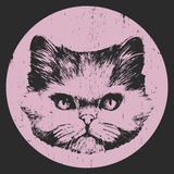 Ritratto del gatto persiano illustrazione vettoriale