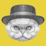 Ritratto del gatto persiano con i vetri ed il cappello illustrazione vettoriale