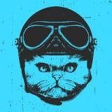 Ritratto del gatto persiano con il casco d'annata royalty illustrazione gratis