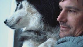 Ritratto del husky della tenuta dell'uomo sulle mani che guardano fuori la finestra, pensando i suoi pensieri e sogno video d archivio