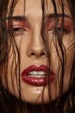 Ritratto del modello di moda. Trucco professionale Immagini Stock