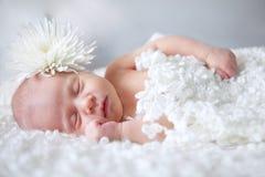 Ritratto del neonato addormentato Immagine Stock