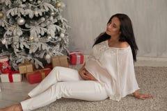 Ritratto del nuovo anno di Natale di inverno di bella donna incinta immagini stock