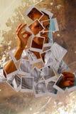 ritratto del polaroid Fotografia Stock Libera da Diritti