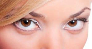 Ritratto del primo piano degli occhi femminili Fotografie Stock Libere da Diritti