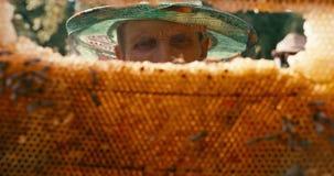 Ritratto del primo piano dell'apicoltore anziano in velo del cappello che tiene e che ispeziona i favi sulla struttura di legno c stock footage