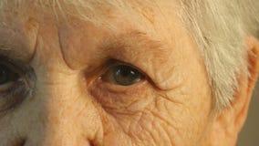 Ritratto del primo piano di uno sguardo fisso del ` s della donna anziana Fotografia Stock Libera da Diritti