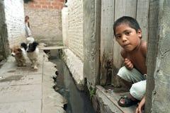 Ritratto del ragazzo argentino e dei suoi cani fotografia stock