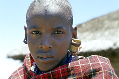 Ritratto del ragazzo masai con sughero in suo orecchio, Kenya Fotografie Stock